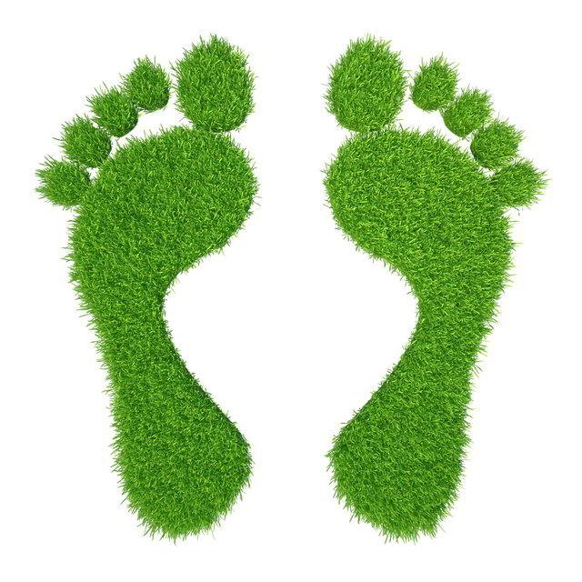 Footprints made from grass