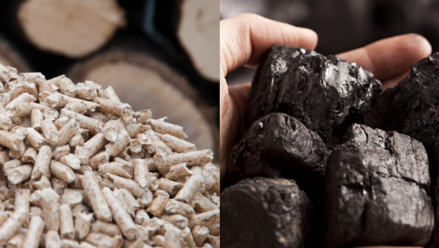 biomass and coal