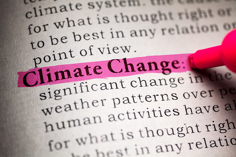 """The phrase, """"Climate Change"""" is highlighted in pink on the page of a dictionary."""